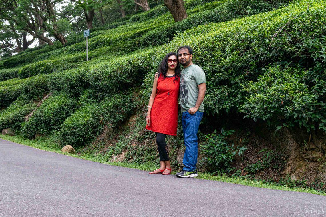 The tea garden memories
