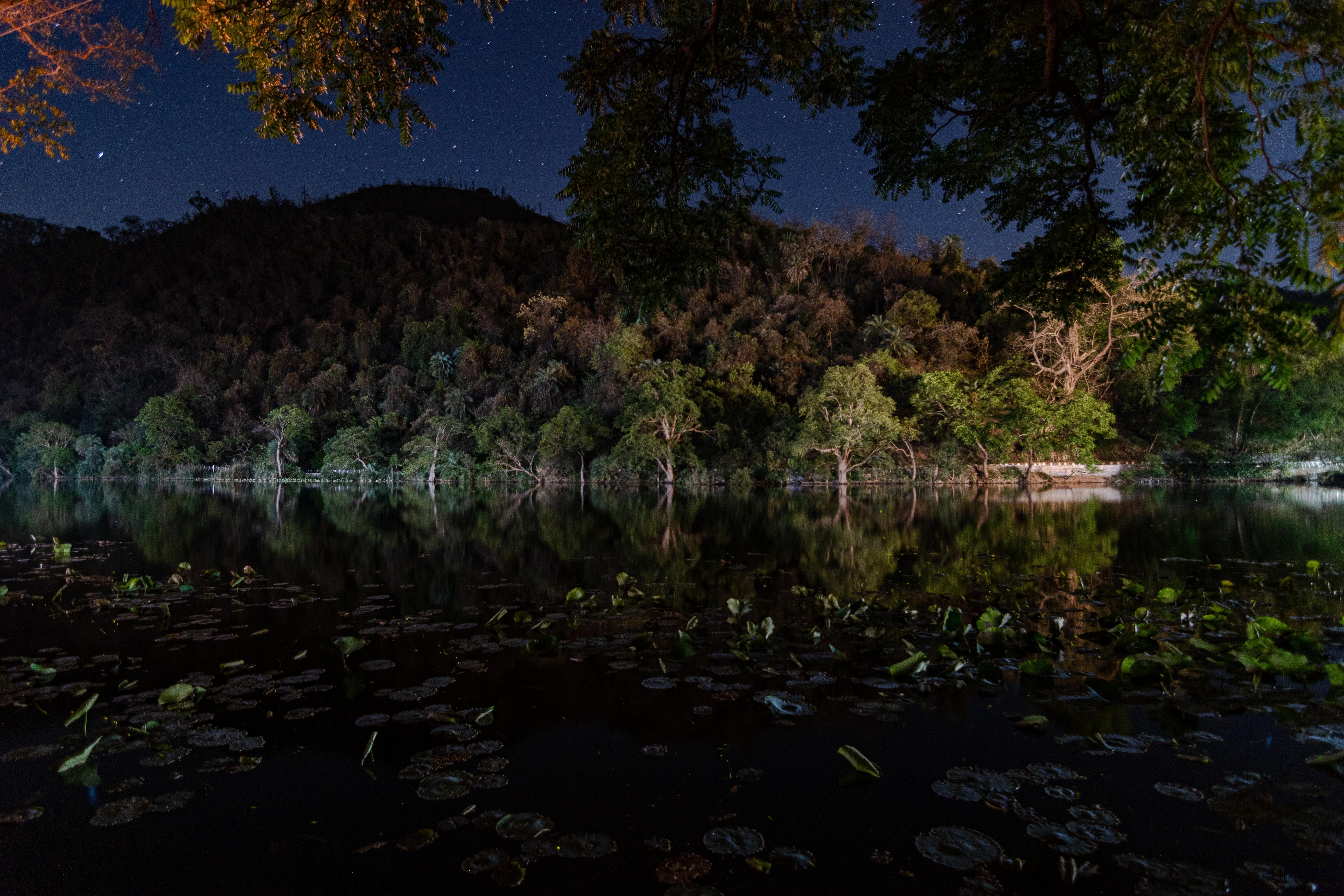 Renuka lake at night